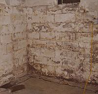 Peeling, Chipping, Basement Wall Coatings in Canby